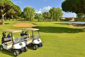 golf-e1541693633550.jpg